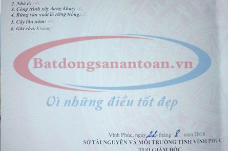 Dat Thanh Tru Vinh Yen Log